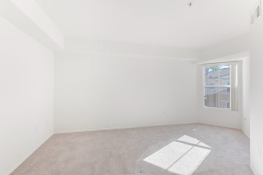 bright carpeted room